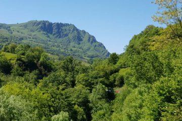 Obligation réelle environnementale, biodiversité
