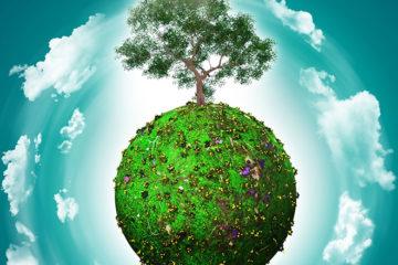 Infractions environnementales