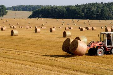 baux ruraux agriculture