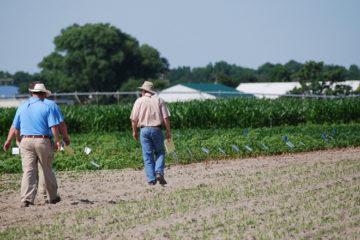 groupement agricole d'exploitation en commun